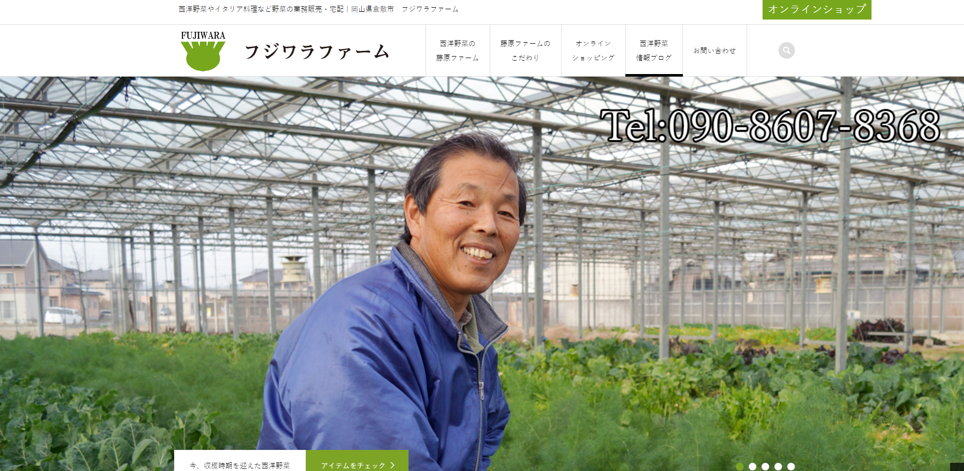 岡山県西洋野菜のフジワラファーム様