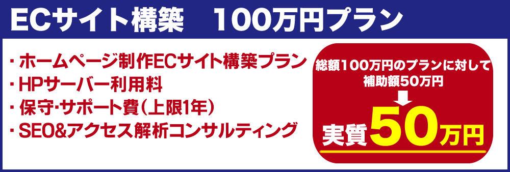 写真:100万円プラン